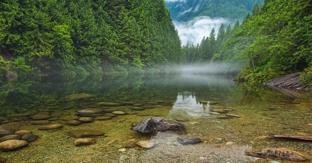 British Columbia clam lake near Maple Ridge