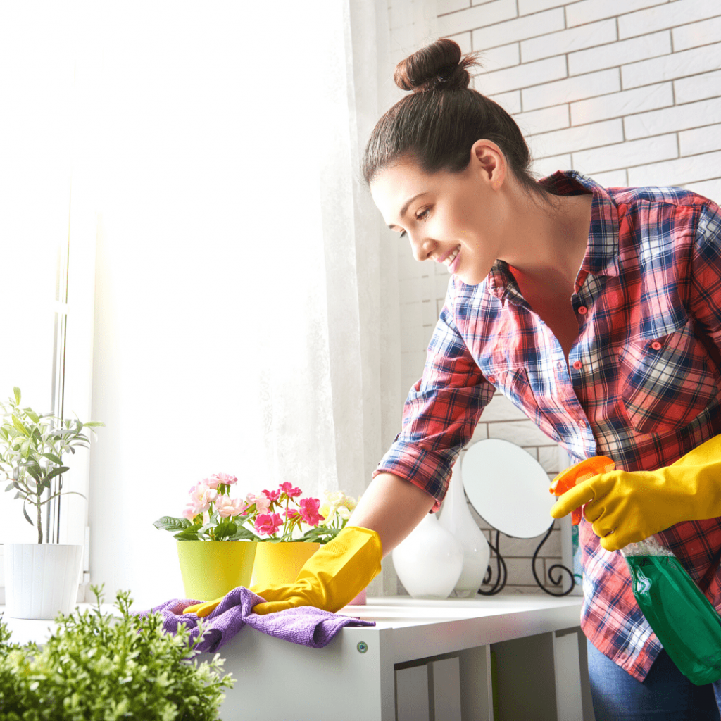 house cleaning service support